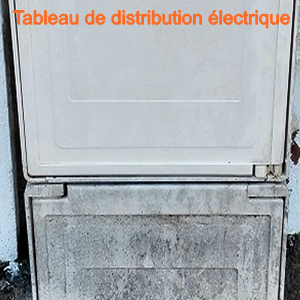 TableauDistributionFrance 300X300